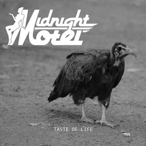 Midnight Motel - Taste of life
