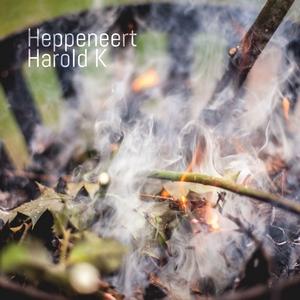 haroldk-heppeneert-cover-klein-vierkant