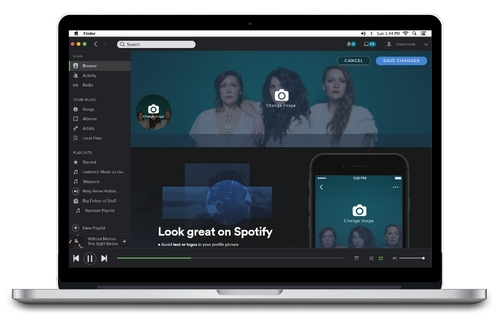 Spotify Fan Insights2